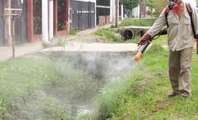 """Dengue: decretan alerta """"preventiva"""" por 180 días"""