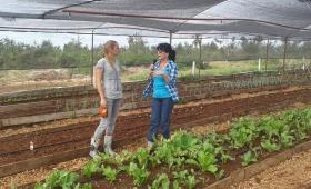 Rebecca, de Suiza a Misiones para comer sano