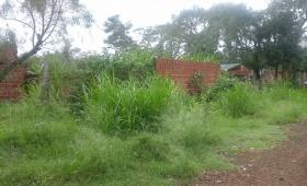 Chacra 107: piden limpieza en un terreno con criaderos y zanjas abiertas