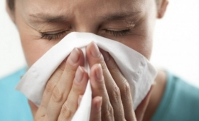 Suspendieron el acto del 25 de Mayo por el brote de Gripe A