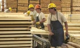 Se estabiliza la situación de trabajadores de la madera