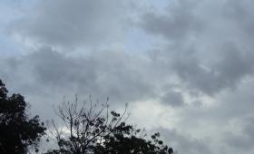 Lunes caluroso con lluvias y tormentas