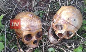 Paraguay: hallan cráneos humanos dentro de una bolsa