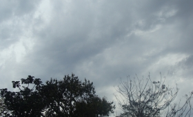 Tiempo: probabilidad de lluvias en todo Misiones