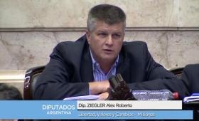 La Renovación no acompañó la Reforma Política y Di Stéfano amenazó con llenar de Dengue el Congreso