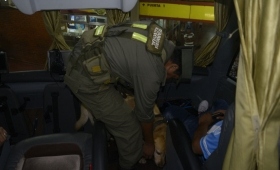 Narcofamilia detenida con cocaína adosada al cuerpo