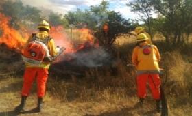 Incendios que afectaron más de 1.400.000 hectáreas ya están controlados