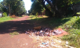 Solicitan arreglo de calles y limpieza en la Chacra 80 de Posadas