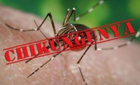 Confirman primer caso de Chikungunya en Paraguay, a 20 km de Misiones