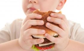 Hambre Cero asiste a 800 niños con obesidad