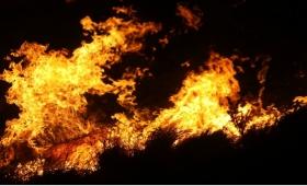 Se quemaron 35 mil kilos de yerba en un secadero de Alberdi