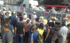 """Fridlmeier: """"Los plazos de pago a 180 y 300 días desencadenaron"""" la crisis yerbatera"""