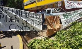 """Garay culpó al INYM por las """"distorsiones"""" en el pago a los yerbateros"""