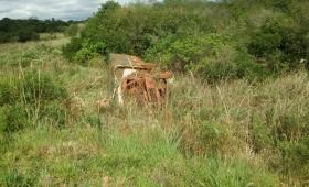 Denuncian falta de control del traslado de tareferos