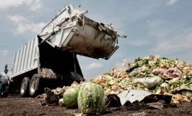Desechos de alimentos: un problema global que esconde la solución contra el hambre