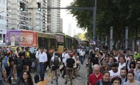Semáforo para peatones que miran el celular