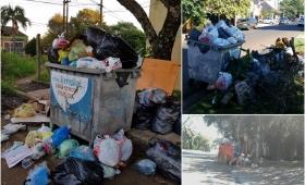 Residuos: se necesitan 10 camiones de recolección y funcionan 5