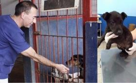 """Elizaincín: """"Adoptar una mascota es un acto de amor responsable"""""""