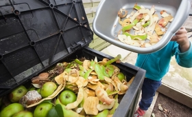 Argentina desperdicia 16 millones de toneladas de alimentos