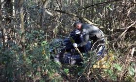 Oberá: encontraron 690 kilos de marihuana ocultos entre malezas