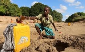 Denuncian que un millón de somalíes huyeron de sus hogares por la sequía