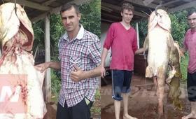 Pescan manguruyú de 70 kilos cerca de Santa Ana
