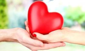 Día de la Donación de Órganos: 673 trasplantes en lo que va del año