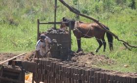 Oleros contra el maltrato de los caballos