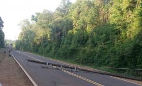 Cayeron postes y dejaron sin luz al norte de Misiones