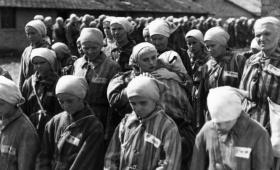 Día Internacional de Conmemoración del Holocausto