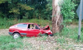 Automovilista falleció tras chocar contra un árbol
