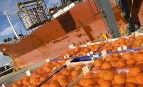 Desde Entre Ríos exportarán 2.000 toneladas de mandarinas a EE.UU