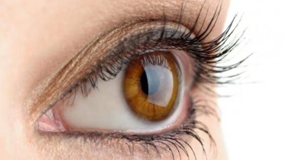 Identifican proteínas que pueden ayudar al diagnóstico temprano del glaucoma