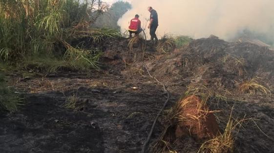 Se quemó un terreno baldío de dos hectáreas