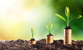 """""""El ahorro es la base del crecimiento"""""""