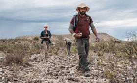 Hallan restos fósiles en La Pampa
