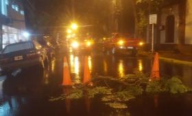 Tormenta en Posadas: hubo diez familias afectadas