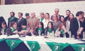 Oficializan la fecha para la votación del aborto legal en Diputados