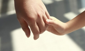 """Piden al Gobierno que """"acelere"""" las adopciones"""