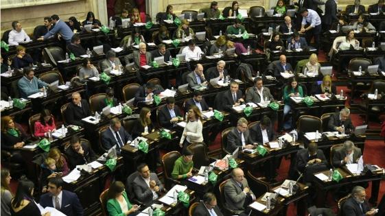 Proyecto de Aborto legal: Diputados dio media sanción