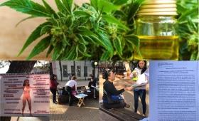 Exigen la adhesión a la Ley de Cannabis Medicinal