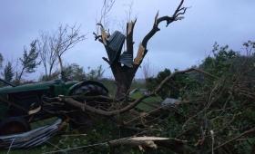 """""""Esto fue un tornado"""", aseguran en Alem"""