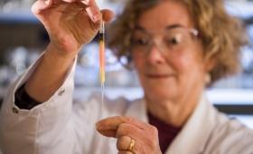 Preocupa entre los investigadores la brecha de género en la ciencia
