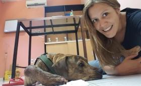 Conocé la historia del perro que inspiró un refugio de animales
