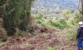 Ecología tarde: máquinas casi arrasan una aldea