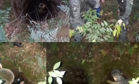 Garupá: rescatan un perro de un pozo de 4 metros