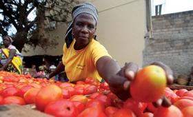 """La FAO pide voluntad política para el """"Hambre cero"""""""