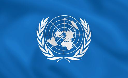Argentina integrará el Consejo de Derechos Humanos de la ONU