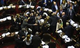 Diputados: enfrentamientos y banderas estadounidenses