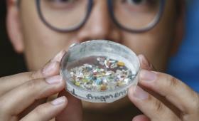 Evidencian la presencia de microplásticos en heces humanas